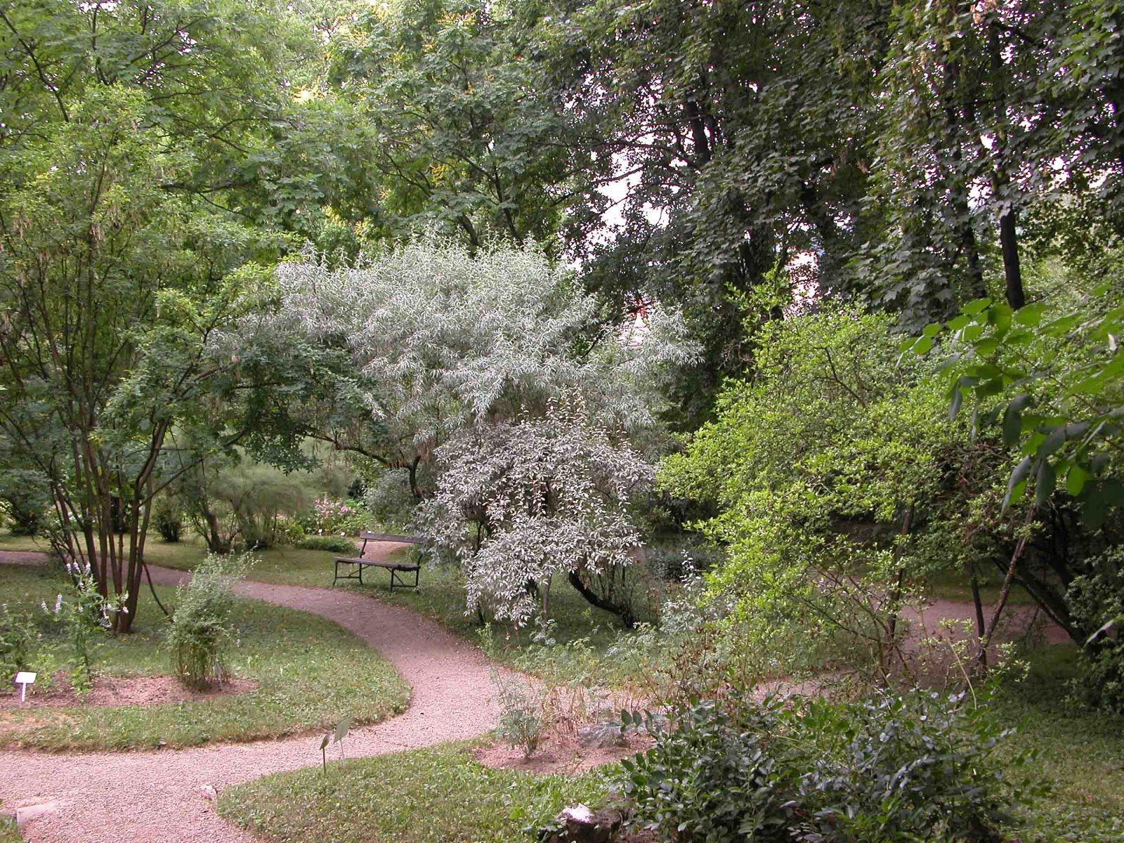 Botanicki Vrt Farmaceutsko Biokemijskog Fakulteta Sveucilista U