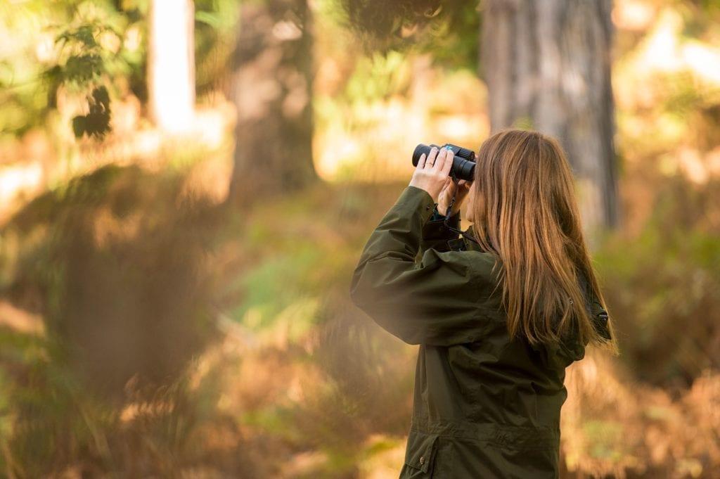 Promatranje ptica u parku Maksimir