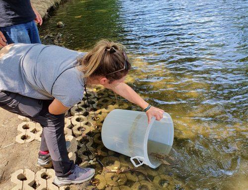 Radovi na Prvom i Drugom jezeru u parku Maksimir